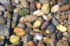 Rocks Under Ocean Water Stock Image
