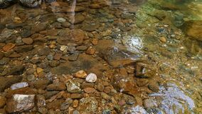 Free Rocks Under Water In The River Near Forest Stock Images - 213253324