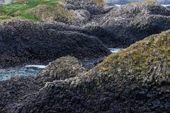 Rocks and vegetation around Ballintoy Harbour. Moyle, Northern Ireland, UK royalty free stock image