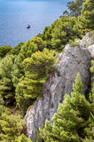 Rocks and vegetation on a cliff of Capri island Stock Images