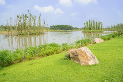 Rocks on verdant shore of lake in sunny summer Stock Images