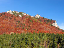 Rocks in Vratna Valley during autumn stock photography