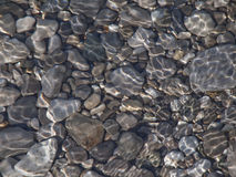 Rocks in water. Smooth stones seen through sunlight in water Stock Image