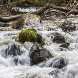Rocks and water. Water flowing between small boulders Royalty Free Stock Images