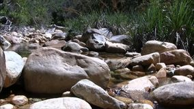 Rocks and water with nature sounds. Low shot of rocks and water with nature sounds in africa stock video footage