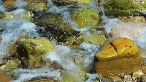 Rocks in the Water stock footage