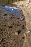 Rocks in water by the shore. Stock Image