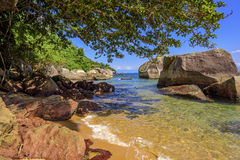 Rocks, water and vegetation Royalty Free Stock Photos