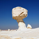 Rocks in the White desert Stock Images