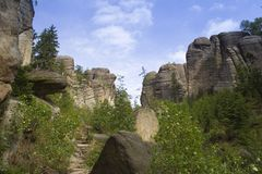 The rocks and wild plants. Beautiful wild plants growing and surrounded by the gigantic rocks Royalty Free Stock Photo