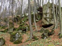 Rocks in the woods Royalty Free Stock Photography