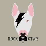 rockstar的小狗 免版税库存照片