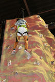 Rockwall climbing Stock Images