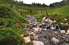 Rocky alpine stream Royalty Free Stock Photo