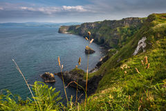 Rocky Atlantic coastline on Causeway Coastal Route. Natural beauty of Antrim Coast, Northern Ireland Royalty Free Stock Photography