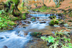 Rocky Autumn Stream Royalty Free Stock Photos