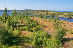Rocky bank of the Ladoga lake. The rocky coast of Ladoga lake covered with wood stock image