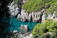 Rocky bay. With green mediterranean vegetation Stock Images