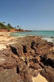Rocky beach Stock Photos