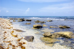 Rocky Beach. Secluded beach in NE Florida Royalty Free Stock Photos