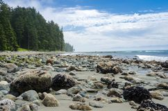 Deserted Beach in Sooke, BC, Canada, and Blue Sky with Clouds. Rocky Beach along the Coast of Vancouver Island on a Summer Morning. Sooke, BC, Canada royalty free stock images