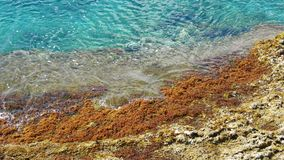 Rocky beach and azure blue waters of the Mediterranean sea. Concept travel. stock video footage