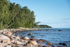 Rocky beach in the baltic sea Royalty Free Stock Images