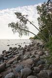 Rocky beach in the baltic sea Royalty Free Stock Photography