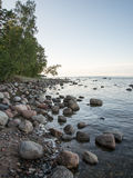 Rocky beach in the baltic sea Stock Image