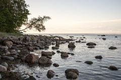 Rocky beach in the baltic sea Stock Photos