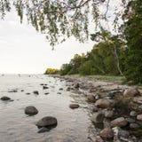 Rocky beach in the baltic sea Stock Photos
