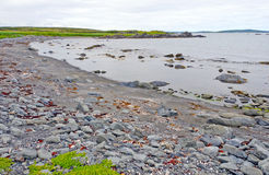 Rocky Beach on a Barren Coast in Newfoundland Stock Images