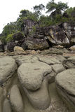 Rocky Beach, Borneo Stock Images