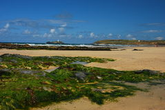 Rocky beach in Cornwall, United Kingdon Stock Image