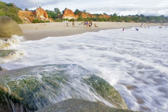 Rocky beach covered by green seaweed Stock Photography