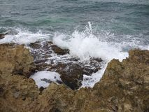Rocky Beach dans Cozumel Photos libres de droits