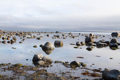 Rocky beach Stock Image