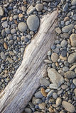 Rocky Beach and Driftwood Stock Photos