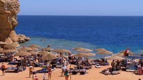 Rocky Beach em uma baía com guarda-chuvas e solários no Egito no Mar Vermelho vídeos de arquivo