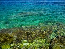 Rocky beach and green water. Clear azur, turquoise water. Environment Royalty Free Stock Photo
