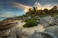 Rocky beach at the jungle. Amazing sunset at Caribbean Sea in Mexico Stock Image