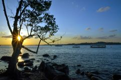 Rocky Beach Landscape. A sunset photo taken at one rocky beach in Singapore Royalty Free Stock Photos