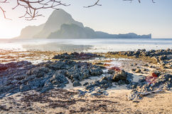Rocky Beach during low tide in morning light in front of amazing Cadlao Island, El-Nido, Palawan, Philippines royalty free stock photography