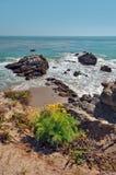 Rocky Beach in Malibu California. Rocky shore with wildflowers in Malibu California Royalty Free Stock Image