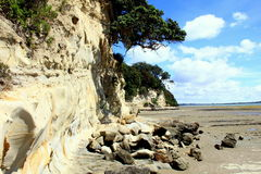 Rocky Beach Muriwai Beach op de Westkust van het het Noordeneiland Nieuw Zeeland Stock Afbeeldingen