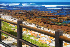 Rocky beach with ocean view royalty free stock photo