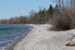 Rocky Beach reculé -- Premier ressort Image stock