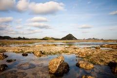 Rocky beach and sea Stock Photography