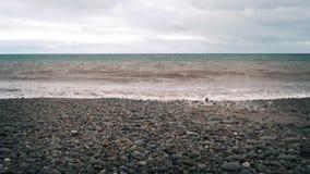 Rocky Beach stock footage