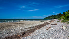 Rocky Beach. With some logs above high water mark and blue sky royalty free stock images